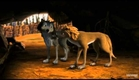 Alpha and Omega 2: A Howl-iday Adventure (MOVIE CLIP!)