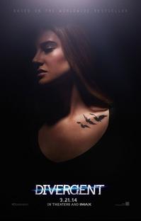 Divergente - Poster / Capa / Cartaz - Oficial 7