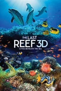 O Último Recife 3D - Poster / Capa / Cartaz - Oficial 1