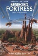 The Besieged Fortress (La citadelle assiégée)