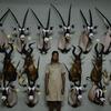 Assista ao trailer de Sáfari, filme sobre a indústria da caça