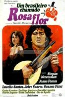 Um brasileiro chamado Rosaflor (Um brasileiro chamado Rosaflor)