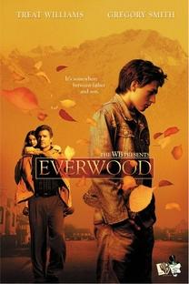 Everwood: Uma Segunda Chance (4ª Temporada) - Poster / Capa / Cartaz - Oficial 2