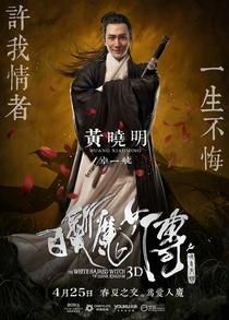 A Bruxa do Cabelo Branco do Reino Lunar - Poster / Capa / Cartaz - Oficial 11