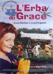 O Barato de Grace - Poster / Capa / Cartaz - Oficial 6