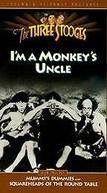 Rixas nas rochas (I'm a monkey's uncle)