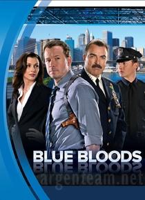 Blue Bloods - Sangue Azul (2ª Temporada) - Poster / Capa / Cartaz - Oficial 1
