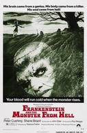 Frankenstein e o Monstro do Inferno (Frankenstein and the Monster from Hell )