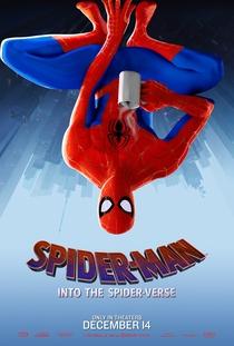Homem-Aranha no Aranhaverso - Poster / Capa / Cartaz - Oficial 8