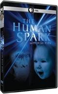 A Centelha Humana (The Human Sparks)