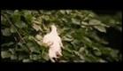 Der Freischütz - Die Filmoper (Hunters Bride) Trailer HD