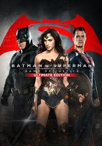 Batman vs Superman - A Origem da Justiça - Poster / Capa / Cartaz - Oficial 21