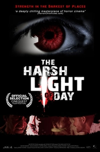 The Harsh Light of Day - Poster / Capa / Cartaz - Oficial 1
