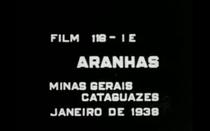 Aranhas - Poster / Capa / Cartaz - Oficial 1