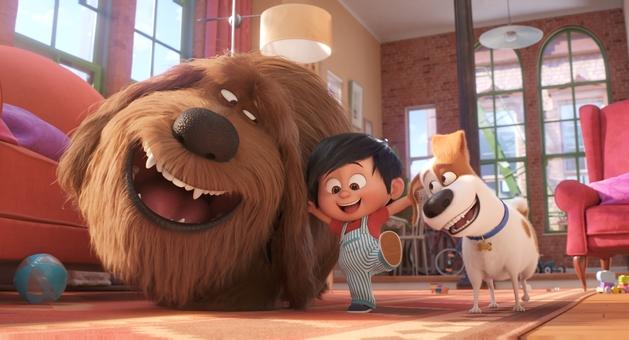 Universal Pictures promove a maior sessão com pets do mundo!
