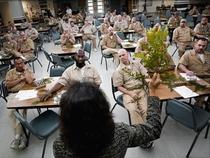 TEDTalks: Como as prisões podem ajudar os presos a viverem vidas significativas - Poster / Capa / Cartaz - Oficial 1
