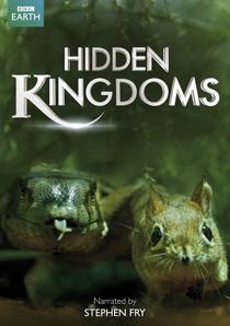 Reinos Ocultos - Poster / Capa / Cartaz - Oficial 1