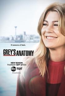 A Anatomia de Grey (15ª Temporada) - Poster / Capa / Cartaz - Oficial 1