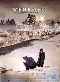 Sono de Inverno - Poster / Capa / Cartaz - Oficial 1