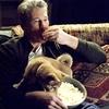 TOP 10 Filmow: filmes emocionantes com animais de estimação