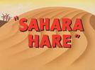 Sahara Hare (Sahara Hare)