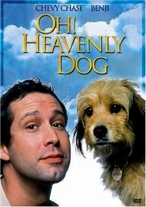 Benji: O Cachorro Divino - Poster / Capa / Cartaz - Oficial 3