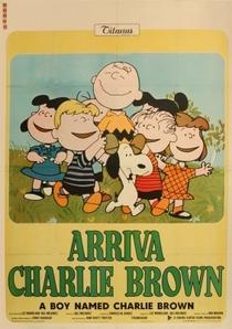Um Garoto Chamado Charlie Brown - Poster / Capa / Cartaz - Oficial 4