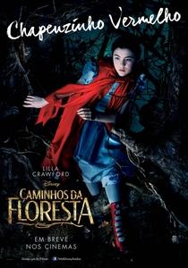 Caminhos da Floresta - Poster / Capa / Cartaz - Oficial 5