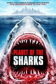 Planeta dos Tubarões - Poster / Capa / Cartaz - Oficial 1