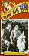 As Aventuras de Rin Tin Tin