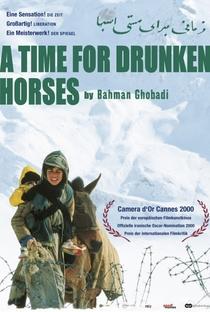 Tempo de Cavalos Bêbados - Poster / Capa / Cartaz - Oficial 2