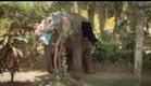 Chandani und ihr Elefant - Trailer deutsch