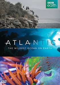 Atlantic: The Wildest Ocean on Earth - Poster / Capa / Cartaz - Oficial 1