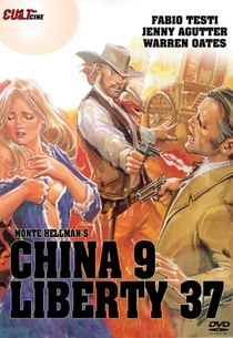A Volta do Pistoleiro - Poster / Capa / Cartaz - Oficial 3