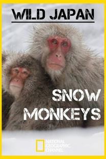 Japão Selvagem - Poster / Capa / Cartaz - Oficial 1