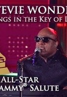Stevie Wonder: Songs in the Key of Life - An All Star Grammy Salute (Stevie Wonder: Songs in the Key of Life - An All Star Grammy Salute)
