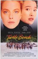 Praia dos Sonhos (Turtle Beach)