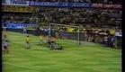 Zico - Os Mais Belos Gols - Documentário (1995)