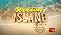 A Ilha do Casamento - Poster / Capa / Cartaz - Oficial 1