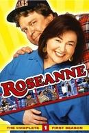Roseanne (1ª Temporada) (Roseanne (Season 1))