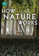 Como a natureza funciona - Poster / Capa / Cartaz - Oficial 1