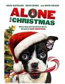 Sozinho No Natal (Bone Alone)