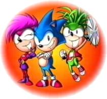 Sonic Underground : Como capturar uma rainha - Poster / Capa / Cartaz - Oficial 1
