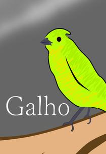 Galho - Poster / Capa / Cartaz - Oficial 1