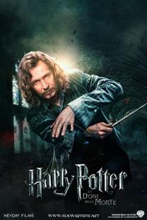 Harry Potter e a Ordem da Fênix - Poster / Capa / Cartaz - Oficial 7