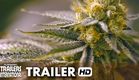Rolling Papers Official Trailer (2015) - Marijuana Documentary [HD]