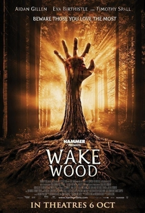 Despertar dos Mortos - Poster / Capa / Cartaz - Oficial 7