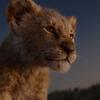 5 Coisas que você deveria saber antes de assistir o novo O Rei Leão