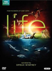 BBC - Vida - Poster / Capa / Cartaz - Oficial 2