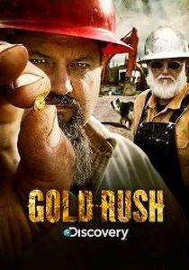 Febre do Ouro (2ª Temporada)  - Poster / Capa / Cartaz - Oficial 1